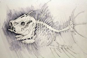 Fish skeleton by crewthere1