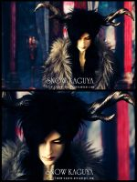 Ruler of Darkness - Ashura's Loneliness by snow-kaguya