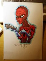 Spider man by pr1030-piratesoul