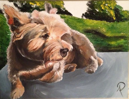 custom acrylic painting: Dog by facesofplaces