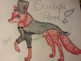 a request -Starlight Flame- by AkomiWolf