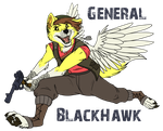 Gen. Blackhawk by tomahachi12