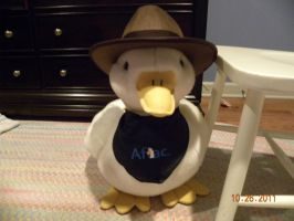 My Aflac Duck by Bowser14456