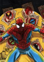 Spider-man hunted sketch card by markman777