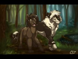 Stroll in the Woods by Chipo-H0P3