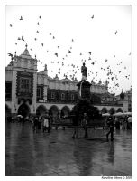 Cracow in the rain. by karolaks