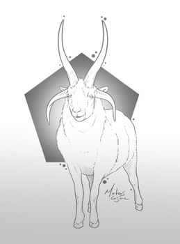 Aries by MateusCosme