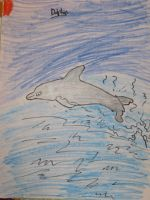 Dolphin Drawing by MewMewMinto1123