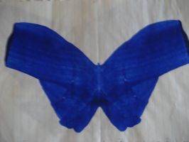 Blue Butterfly by stacemyster