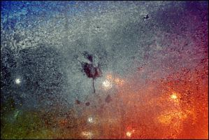 Storm Rain Against My Window On October 28   by eskile