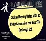 Chelsea Manning Writes A Bill! by IAmTheUnison