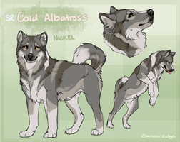 SR Greenland Dog - Nickel by Sumac-Ridge