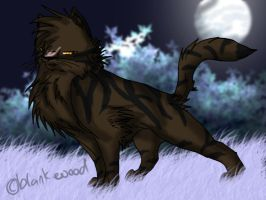 tigerstar or claw by blankwood