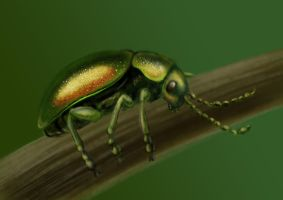 dogbane beetles are cuties by Trutze