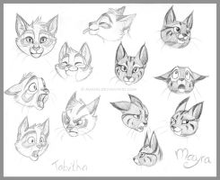 expressions: Tabby and Mayra by Avanii