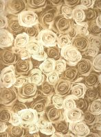 Golden Roses - Unrestricted by Vesperity-Stock