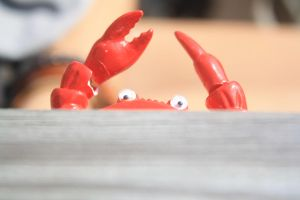 Mr. Krabs Looms by GuineverePhotos