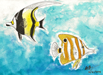 My Favorite Fishies by highray