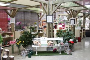 Nurseries Montecarlo Exhibition 1 by roundtower