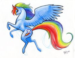 Rainbowdash by MegSyv