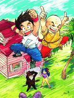 Dragonball swag by Commoner32
