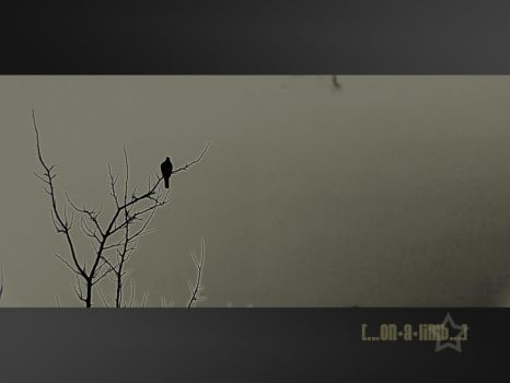 On a Limb by HypeRiot