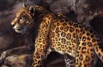 Large Spots by kenket