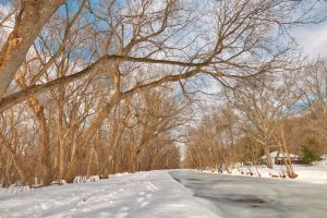 Winter Canal Trail by somadjinn