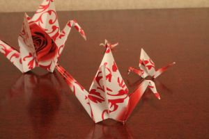 1000 cranes_differences by Fricky-Blue-Eye
