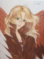 Maximum Ride by minniemoon