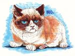 Grumpy Cat by BooYeh