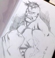 BCC 2010 another HULK sketch by RyanOttley