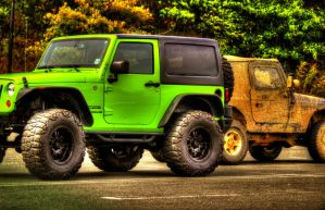2 Types of Jeep Owners by SharpPhotoStudio