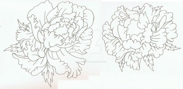 Peony Designs by Heavy-metal-ink