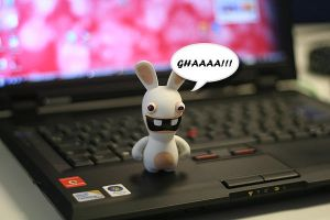 My Raving Rabbid by anca-v
