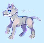 smile by alfeddy