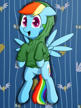 Dashie in a Hoodie by 10art1