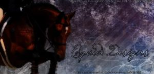 Bay Jumper Horse Pic by EquideDesigns