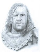 Sandor Clegane - The Hound by Polaris279
