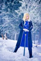 FMA - Sovereign by ayashige