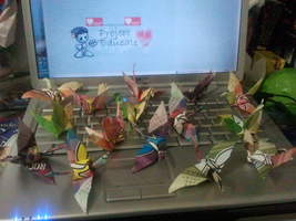 1000 Cranes project by TsuKaza90