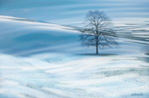 Winters Tree by Estruda