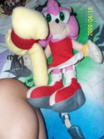 Amy and her hammer plush by AshleyFluttershy