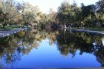 Bidwell Park by clberry05
