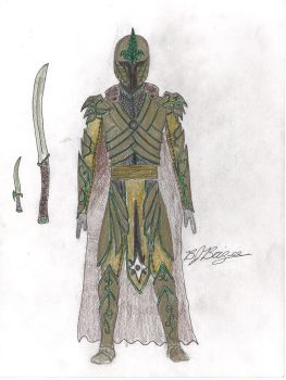 elven armour by bjbrizee7