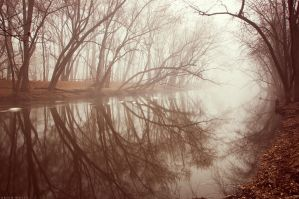 Shrouded in Fog III by BrianWolfe