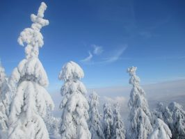 Winter in Poland by Effree
