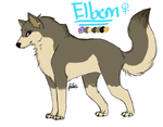 Elbem Reference (my pirate lupe) by shattered-bones