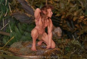 fairy male 2 by polymer-people