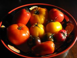 Heirloom Tomatoes 2 by mrskupe